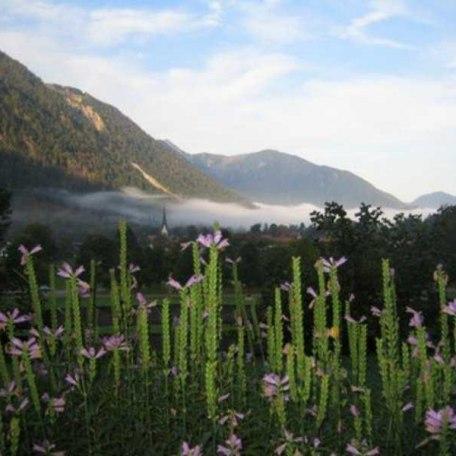 Hebstlicher Morgennebel zieht ab, © im-web.de/ Tourist-Information Bayrischzell