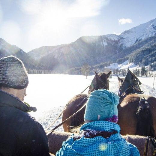 Pferdeschlittenfahrten Geitau, © Florian Liebenstein