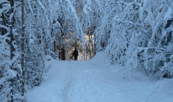 Kleine Geitau Schneeschuh-Runde, © Willy Kravanja