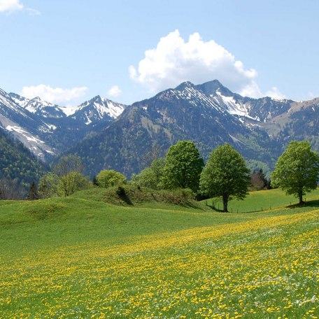 https://d1pgrp37iul3tg.cloudfront.net/objekt_pics/obj_full_28470_003.jpg, © im-web.de/ Tourist-Information Bayrischzell