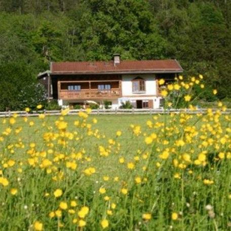 Blühende Wiesen, © im-web.de/ Tourist-Information Bayrischzell