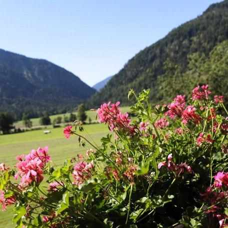 Ausblick vom Südbalkon, © im-web.de/ Tourist-Information Bayrischzell