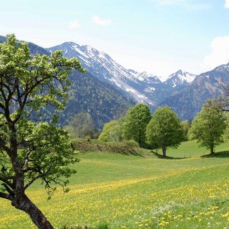 https://d1pgrp37iul3tg.cloudfront.net/objekt_pics/obj_full_28470_002.jpg, © im-web.de/ Tourist-Information Bayrischzell