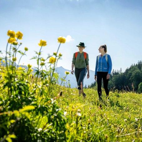 Wandern am Sudelfeld, © im-web.de/ Tourist-Information Bayrischzell